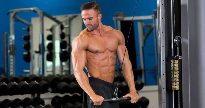 A Guide on How to Build Muscle